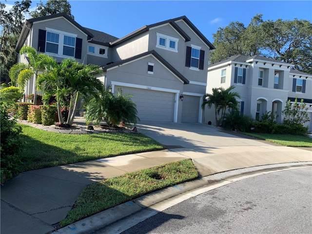 13803 N Fairway Bunker Drive, Tampa, FL 33626 (MLS #U8062128) :: GO Realty