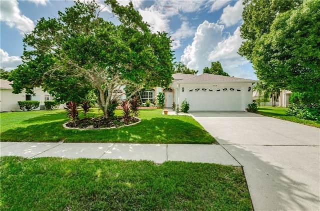 9034 Bel Meadow Way, Trinity, FL 34655 (MLS #U8062133) :: Delgado Home Team at Keller Williams