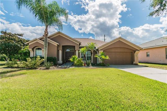3546 Burntwood Court, Holiday, FL 34691 (MLS #U8062136) :: Andrew Cherry & Company