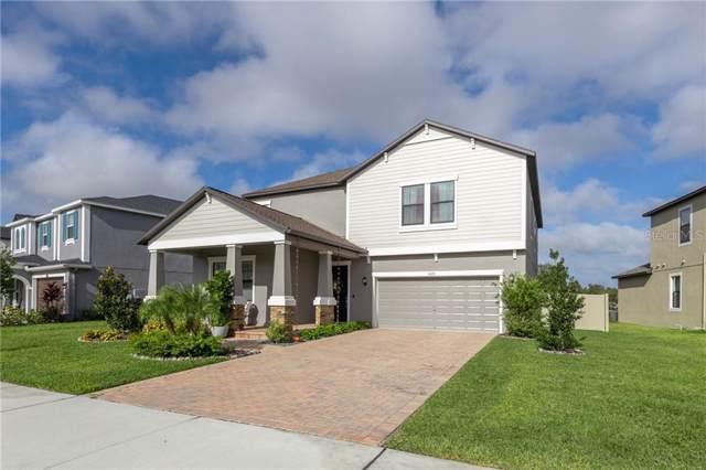 4623 Coachford Drive, Wesley Chapel, FL 33543 (MLS #U8062225) :: Baird Realty Group