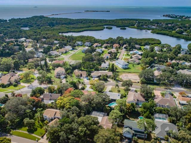 1309 Hillside Drive, Tarpon Springs, FL 34689 (MLS #U8062259) :: Keller Williams Realty Peace River Partners