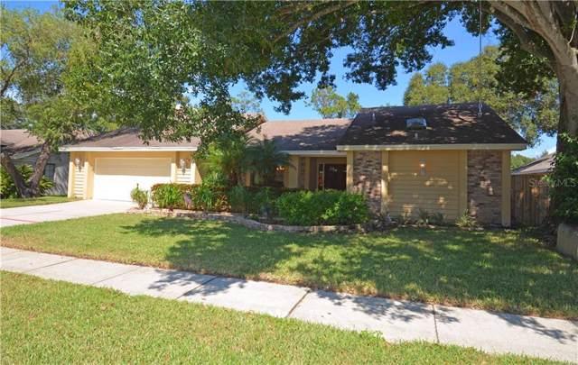 2589 Skipper Trail, Clearwater, FL 33761 (MLS #U8062287) :: GO Realty