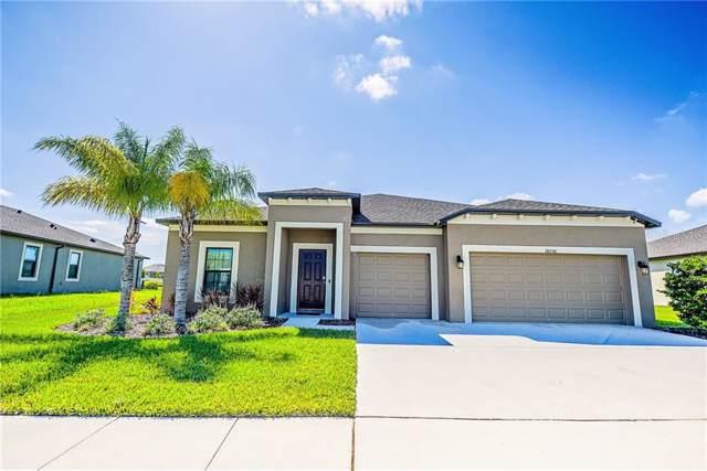 18730 Cortes Creek Boulevard, Spring Hill, FL 34610 (MLS #U8062468) :: Bustamante Real Estate