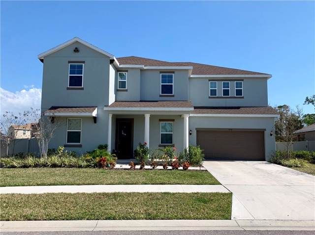 3238 Mela Court, Holiday, FL 34691 (MLS #U8062510) :: The Robertson Real Estate Group