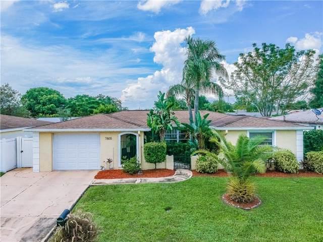 7805 Burnham Drive, Port Richey, FL 34668 (MLS #U8062558) :: Bustamante Real Estate