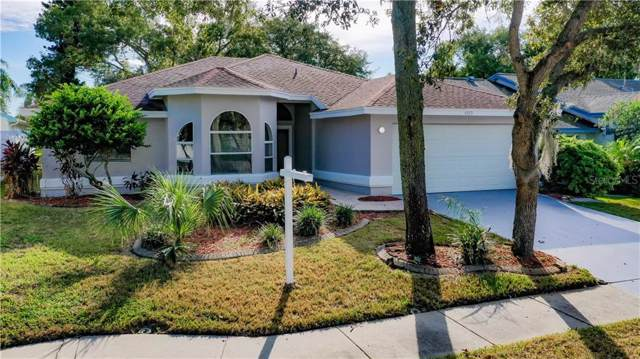 4859 Harbor Woods Drive, Palm Harbor, FL 34683 (MLS #U8062580) :: Griffin Group