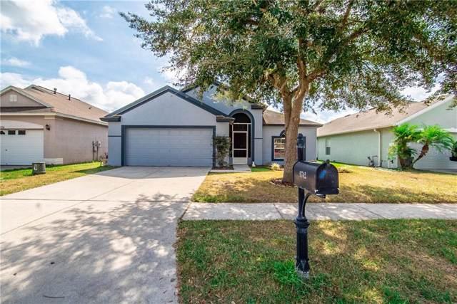 9742 Patrician Drive, New Port Richey, FL 34655 (MLS #U8062611) :: Bustamante Real Estate