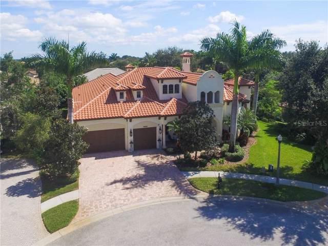 10220 Falcon Terrace, Seminole, FL 33778 (MLS #U8062710) :: Keller Williams Realty Peace River Partners
