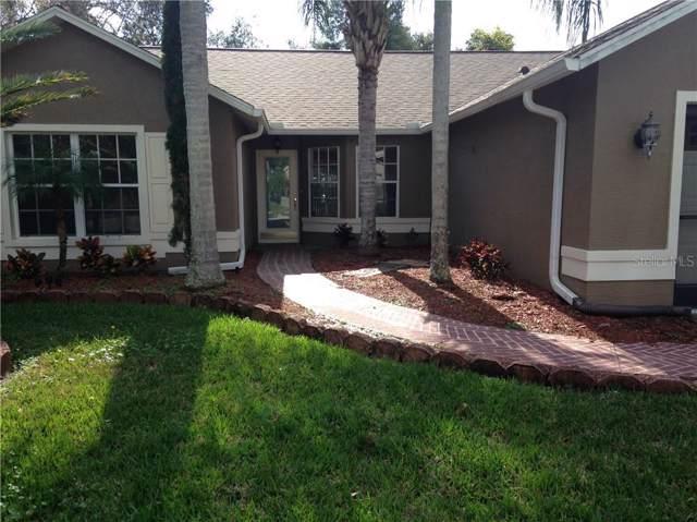 10326 Bellwood Avenue, New Port Richey, FL 34654 (MLS #U8062714) :: Paolini Properties Group