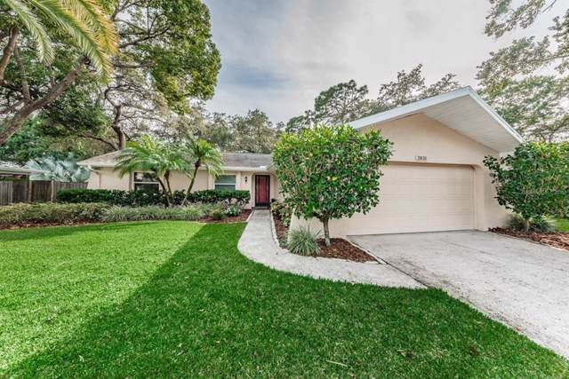 2831 Meadow Wood Drive, Clearwater, FL 33761 (MLS #U8062783) :: The Robertson Real Estate Group
