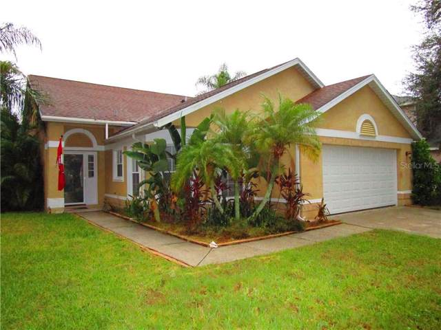 4841 Wellbrook Drive, New Port Richey, FL 34653 (MLS #U8062890) :: Homepride Realty Services