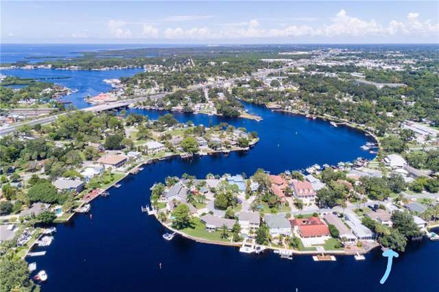 5530 Manatee Point Drive, New Port Richey, FL 34652 (MLS #U8062947) :: Premier Home Experts
