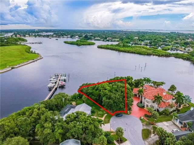 1600 Meyers Cove Drive, Tarpon Springs, FL 34689 (MLS #U8063119) :: The Brenda Wade Team