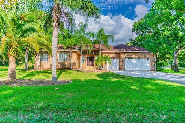 901 Riverside Ridge Road, Tarpon Springs, FL 34688 (MLS #U8063958) :: Pristine Properties