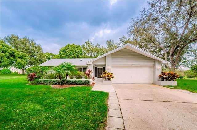 3250 Ayr Drive, Palm Harbor, FL 34684 (MLS #U8063970) :: Burwell Real Estate