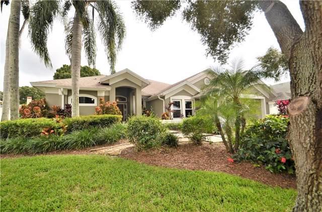 841 Belted Kingfisher Drive, Palm Harbor, FL 34683 (MLS #U8064333) :: Team Bohannon Keller Williams, Tampa Properties
