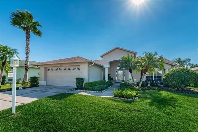 11830 Washburn Place, Trinity, FL 34655 (MLS #U8064429) :: Armel Real Estate