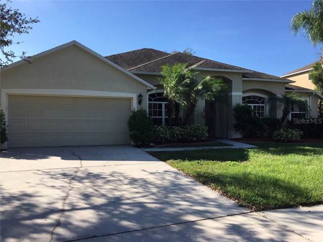27220 Fordham Drive, Wesley Chapel, FL 33544 (MLS #U8064505) :: Team Bohannon Keller Williams, Tampa Properties