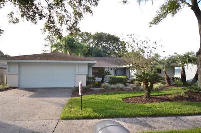 5804 Lady Bug Court, Tampa, FL 33625 (MLS #U8064594) :: Team TLC | Mihara & Associates