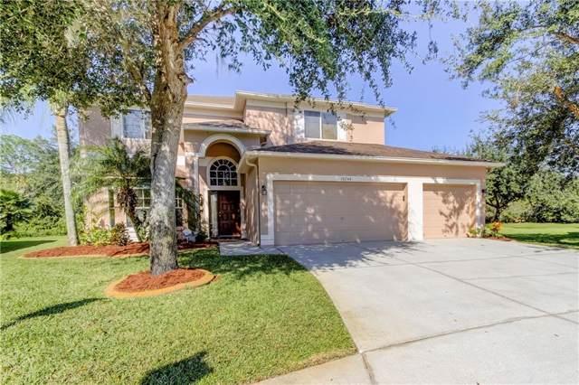 16244 Carnoustie Drive, Odessa, FL 33556 (MLS #U8064685) :: The Duncan Duo Team