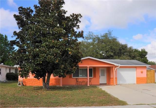 6117 Cecelia Drive, New Port Richey, FL 34653 (MLS #U8064842) :: Team Borham at Keller Williams Realty