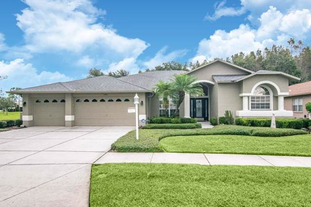 1530 Avada Court, Trinity, FL 34655 (MLS #U8064883) :: Team Borham at Keller Williams Realty