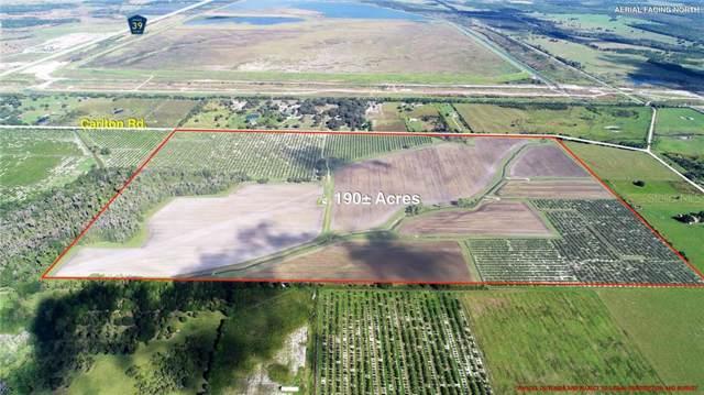 13509 Carlton Road, Parrish, FL 34219 (MLS #U8064916) :: EXIT King Realty