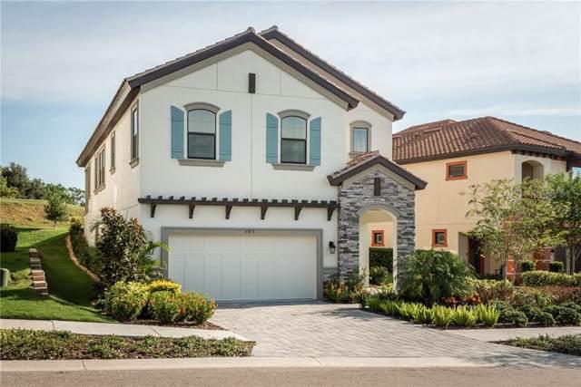 3575 Torino Lane, Palm Harbor, FL 34683 (MLS #U8065142) :: Armel Real Estate
