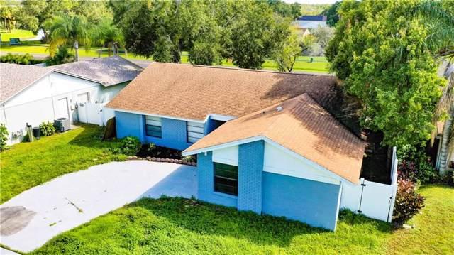 10607 Willowbrae Drive, Tampa, FL 33624 (MLS #U8065183) :: Lucido Global