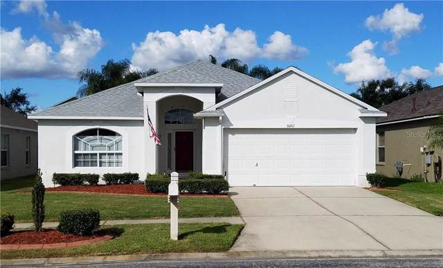 30917 Wooley Court, Wesley Chapel, FL 33543 (MLS #U8065229) :: Team Bohannon Keller Williams, Tampa Properties
