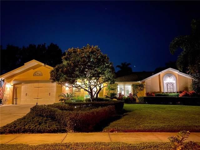 825 Peggy Ray Drive, Dunedin, FL 34698 (MLS #U8065301) :: Burwell Real Estate