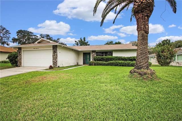 1622 Treasure Drive, Tarpon Springs, FL 34689 (MLS #U8065359) :: Homepride Realty Services