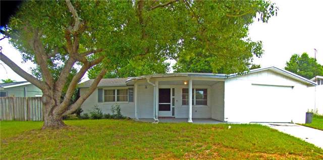 4810 Daphne Street, New Port Richey, FL 34652 (MLS #U8065419) :: Team Borham at Keller Williams Realty