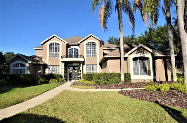 4085 Arlington Drive, Palm Harbor, FL 34685 (MLS #U8065668) :: Delgado Home Team at Keller Williams