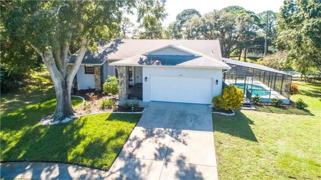 1421 Ironworks Lane, Tarpon Springs, FL 34689 (MLS #U8065710) :: Lucido Global