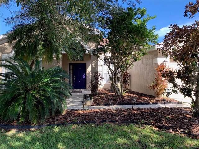 19164 Dove Creek, Tampa, FL 33647 (MLS #U8065899) :: Team Bohannon Keller Williams, Tampa Properties