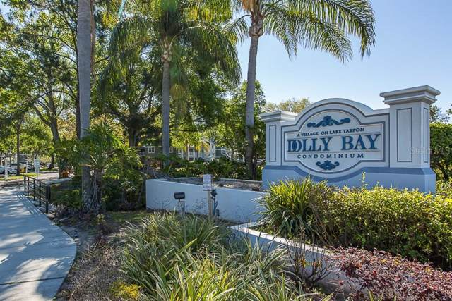2533 Dolly Bay Drive #303, Palm Harbor, FL 34684 (MLS #U8065957) :: Bustamante Real Estate