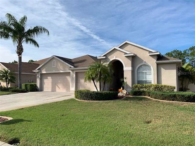 2639 Ravendale Lane, Holiday, FL 34691 (MLS #U8066093) :: Cartwright Realty