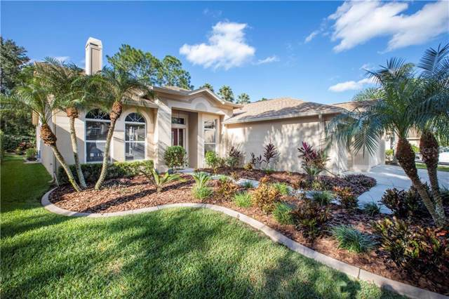 10210 Thicket Point Way, Tampa, FL 33647 (MLS #U8066151) :: Florida Real Estate Sellers at Keller Williams Realty