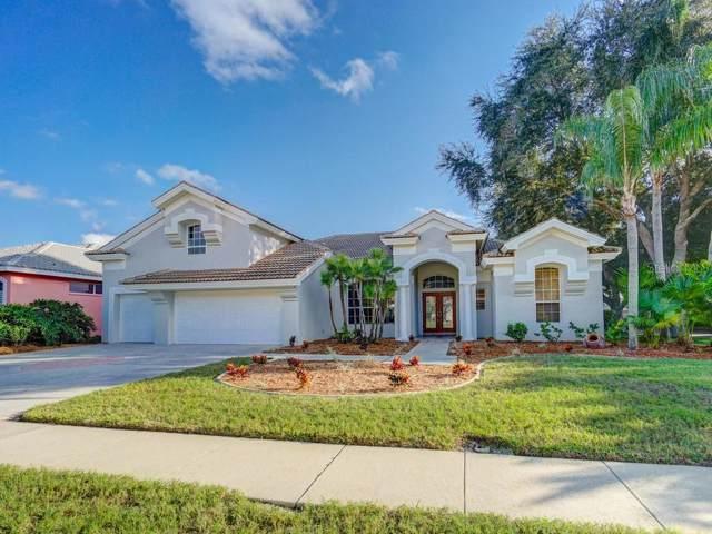 5263 Karlsburg Place, Palm Harbor, FL 34685 (MLS #U8066212) :: Lock & Key Realty