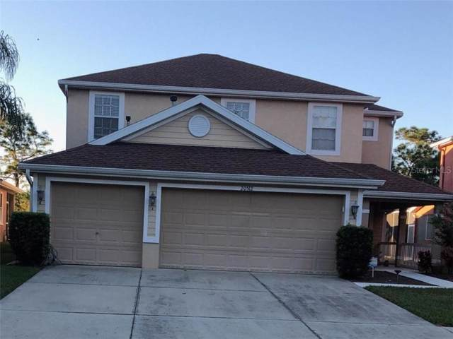 20512 Sultana Court, Tampa, FL 33647 (MLS #U8066339) :: The Robertson Real Estate Group