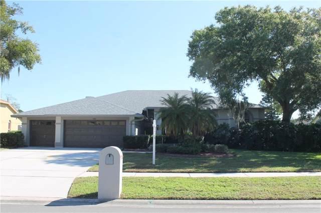 17511 Tally Ho Court, Odessa, FL 33556 (MLS #U8066351) :: Team Bohannon Keller Williams, Tampa Properties