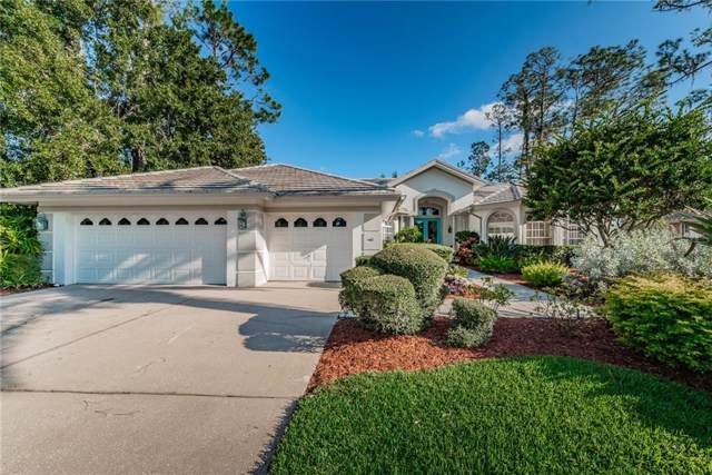 1304 Preservation Way, Oldsmar, FL 34677 (MLS #U8066384) :: Team Borham at Keller Williams Realty