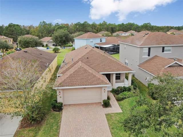 20158 Bay Cedar Avenue, Tampa, FL 33647 (MLS #U8066395) :: Team Bohannon Keller Williams, Tampa Properties