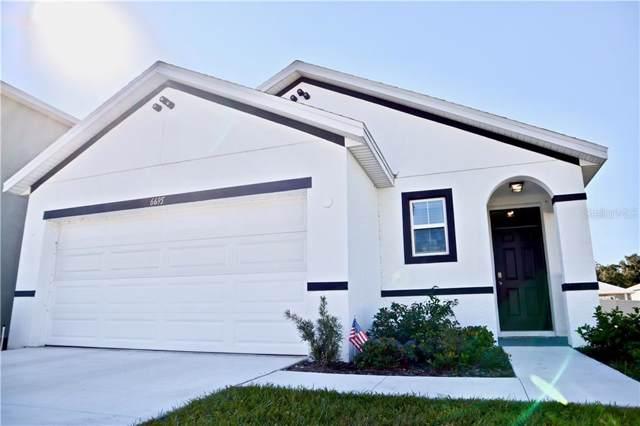 6695 Seaway Drive, Brooksville, FL 34601 (MLS #U8066449) :: The Light Team