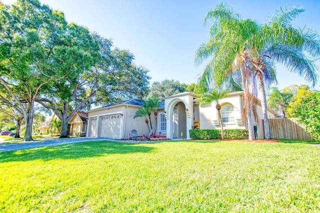 2646 Jarvis Circle, Palm Harbor, FL 34683 (MLS #U8066456) :: Delgado Home Team at Keller Williams