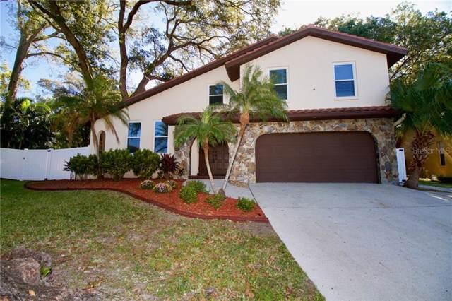 2034 Cindy Circle, Palm Harbor, FL 34683 (MLS #U8066541) :: Team Bohannon Keller Williams, Tampa Properties