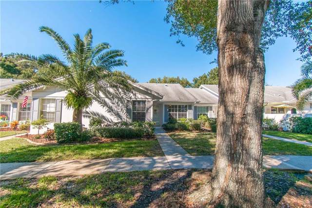 2733 Featherstone Drive, Holiday, FL 34691 (MLS #U8066564) :: Cartwright Realty