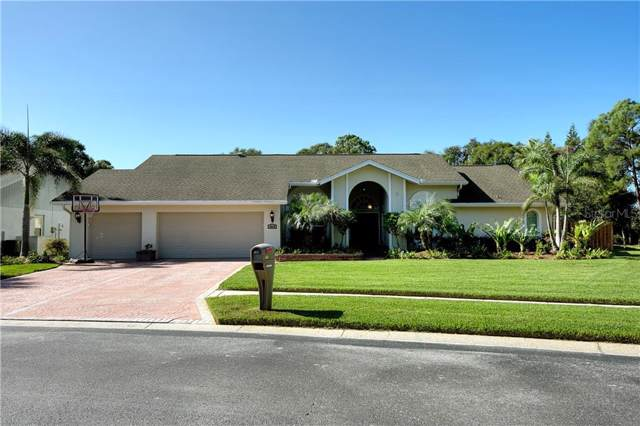 3018 Edgemoor Drive, Palm Harbor, FL 34685 (MLS #U8066801) :: Griffin Group