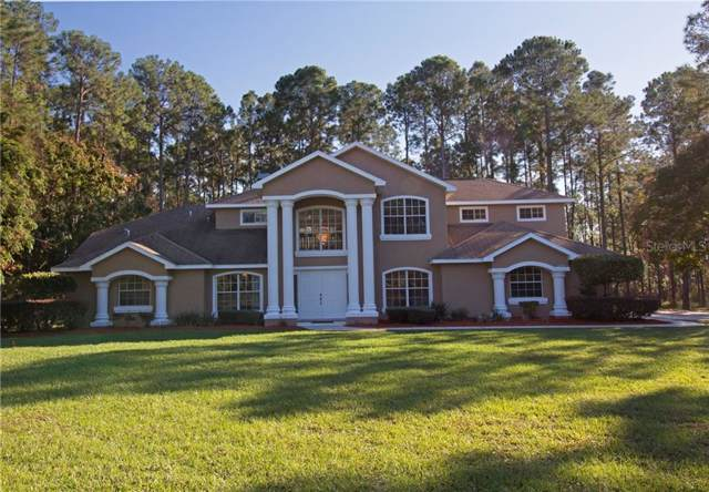 10298 Waters Edge Court, Spring Hill, FL 34613 (MLS #U8066949) :: BuySellLiveFlorida.com
